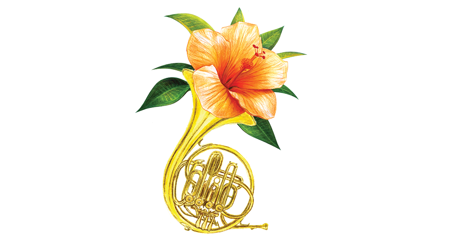 An illustration of an orange tropical flower coming out of a french horn.