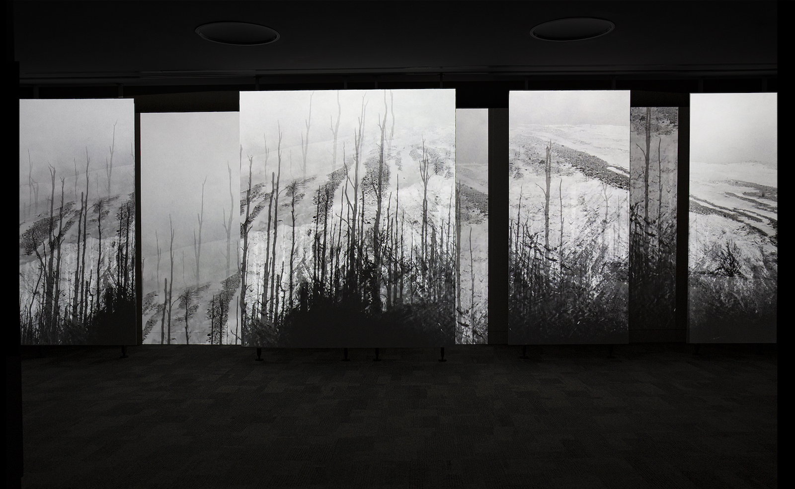 image of Strata exhibition